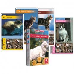 KARTY ANIMAL TRUMPS CATS